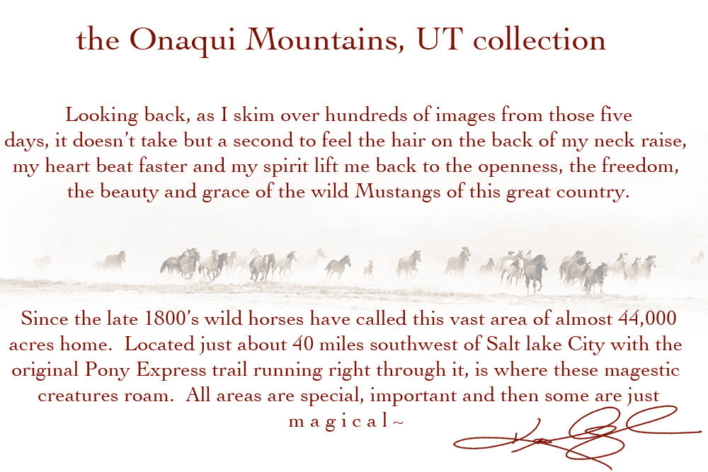 the Onaqui Mountains Utah collection